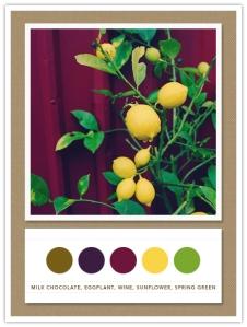 cores na decoracao