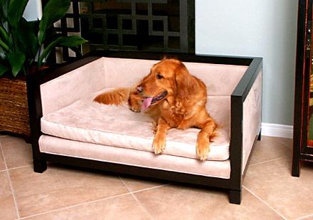 cama de cachorro que parece sofa