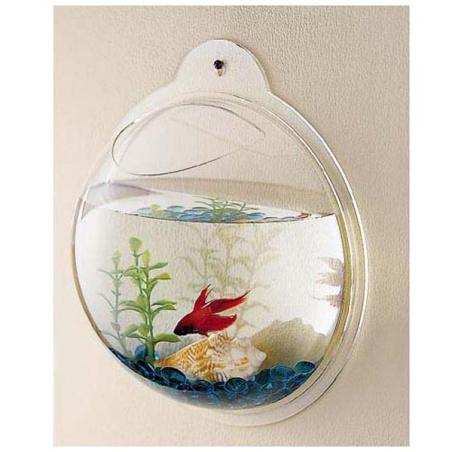 aquario de plastico