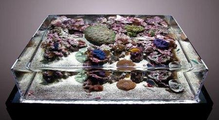 aquario moderno