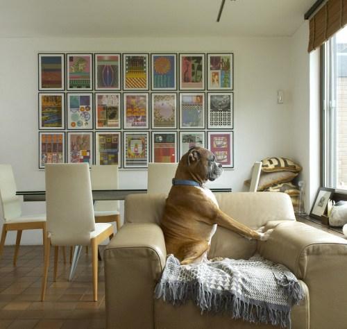 Como Colocar Quadros Na Sala De Tv ~  , como se fosse um quadro grande E eu amo esse cachorro fazendo pose