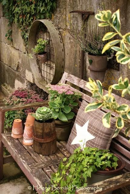 vasos de plantas no banco