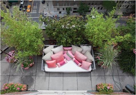 sofa com plantas