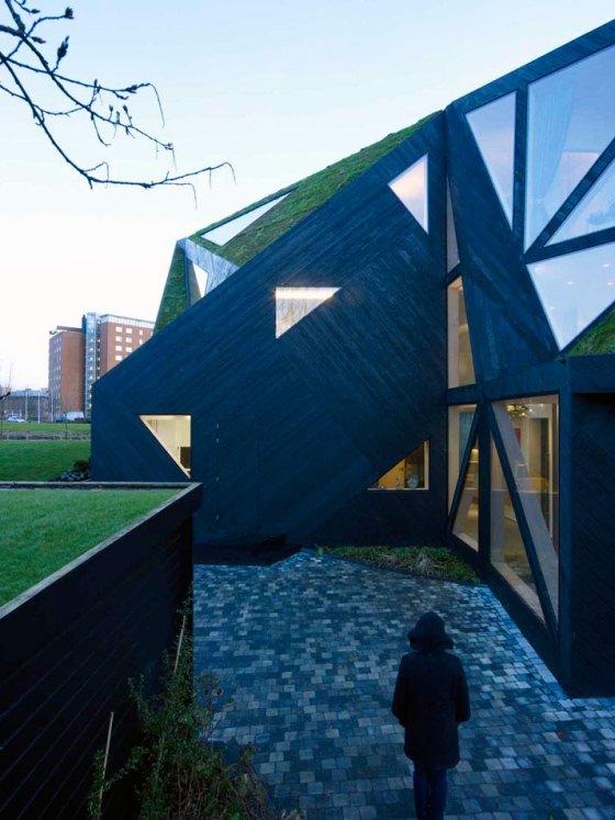 casa tem telhado verde, vigas de madeira, muito vidro e ângulos